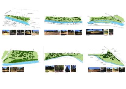 paarl-arboretum-analysi