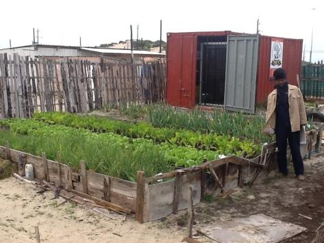 Benji at the centres veggie garden